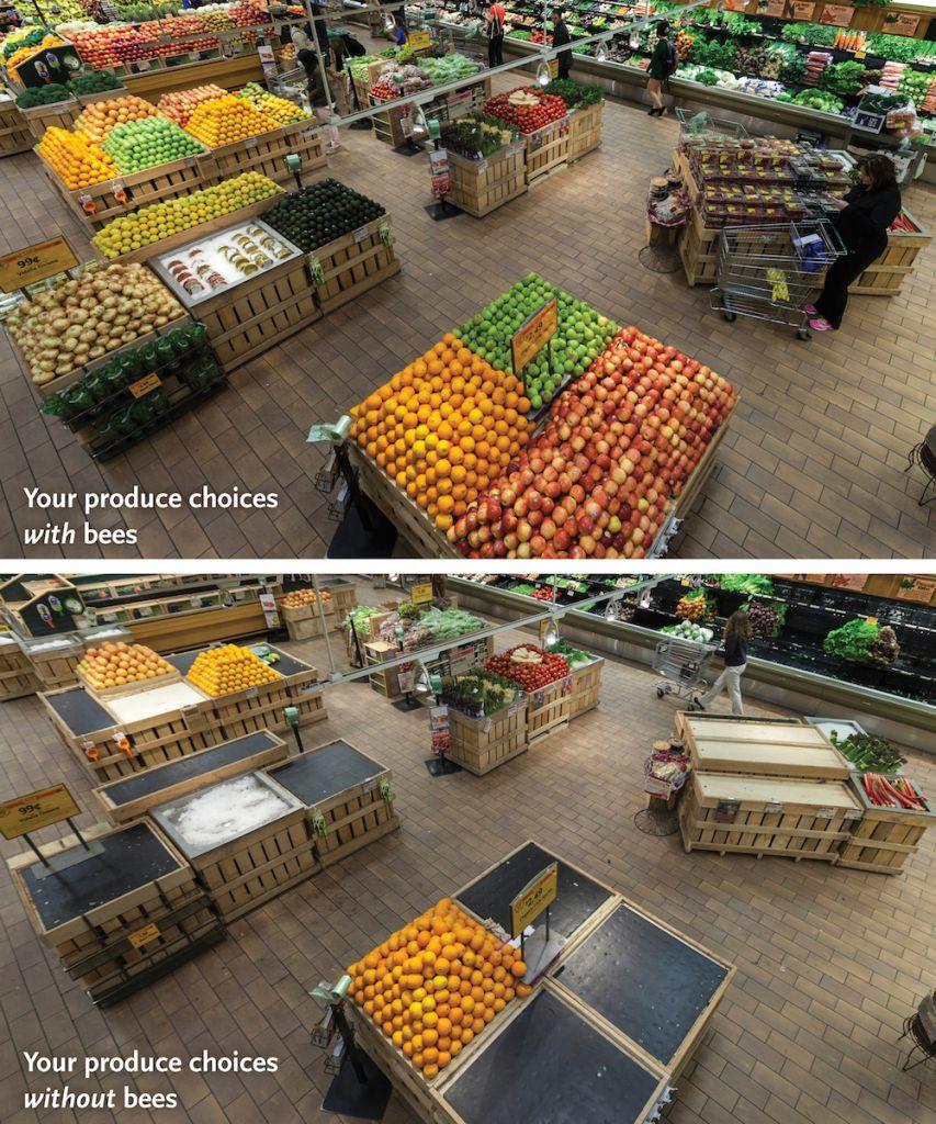image: whole foods market